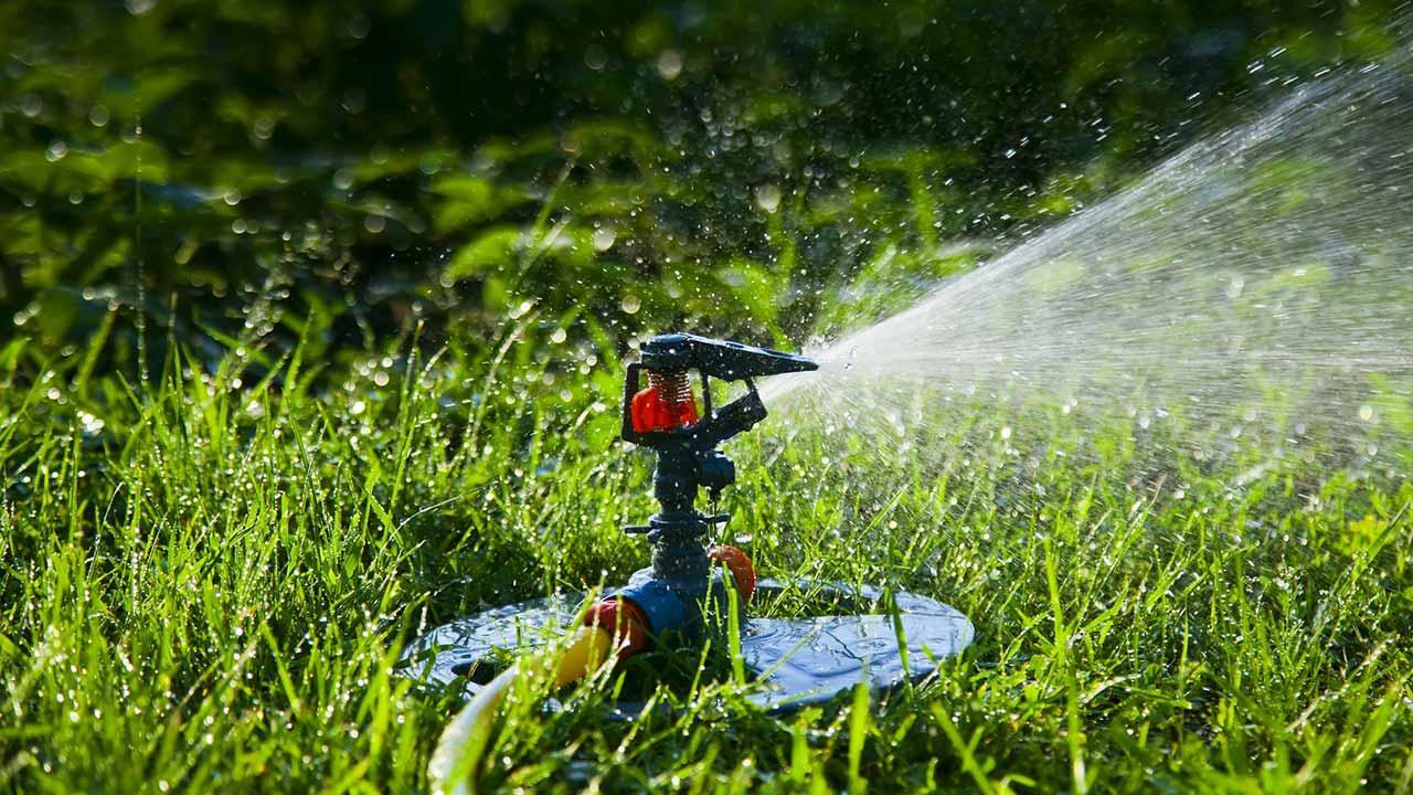 Die richtige Rasenpflege - der Rasen wird gewässert