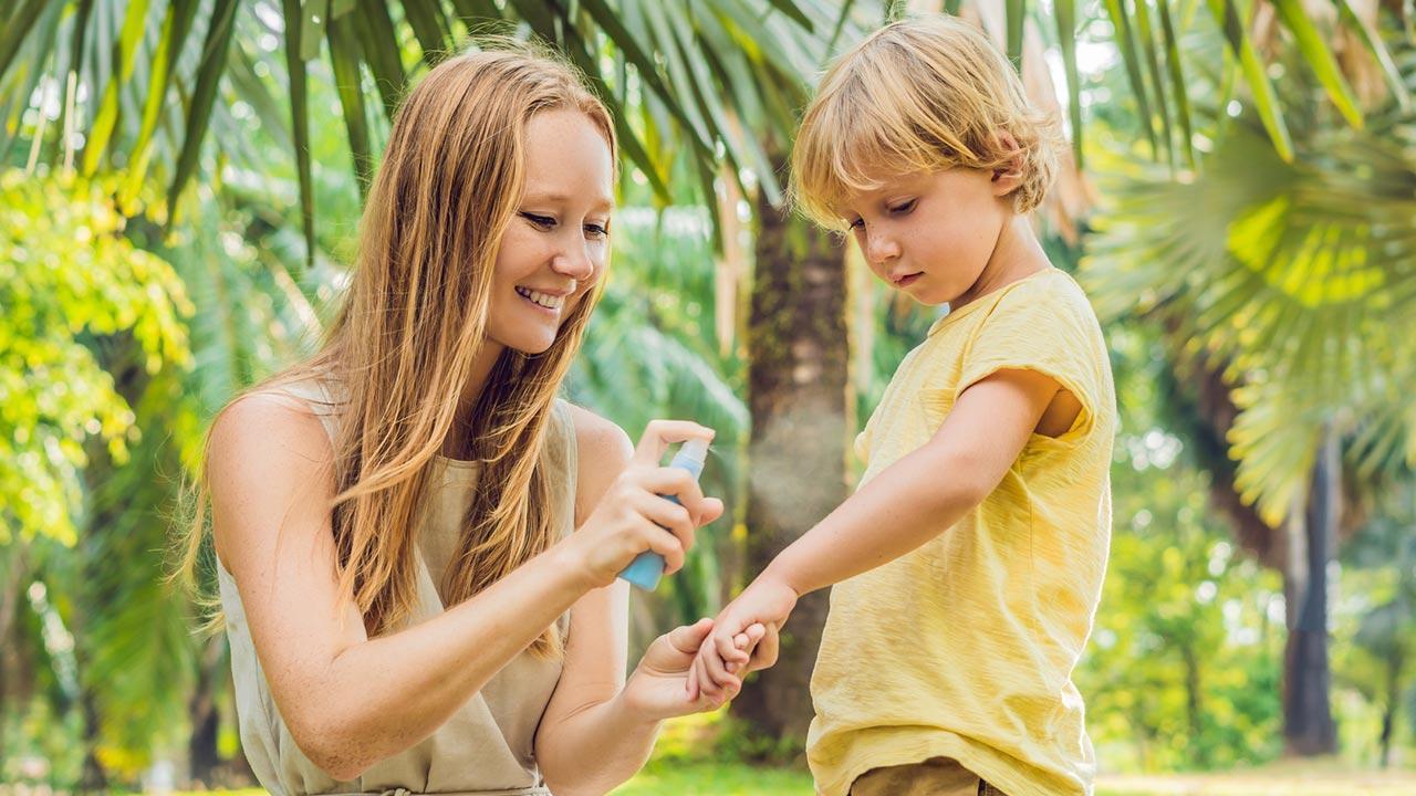Effektiver Insektenschutz in Haus und Wohnung - Mückenschutz im Spray