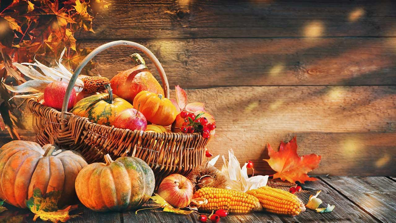 Die schönsten Halloween Deko-Ideen für Garten und Terrasse - Herbst Dekoration