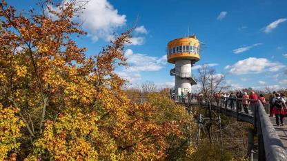 Familienwanderung im Nationalpark Hainich in Thüringen