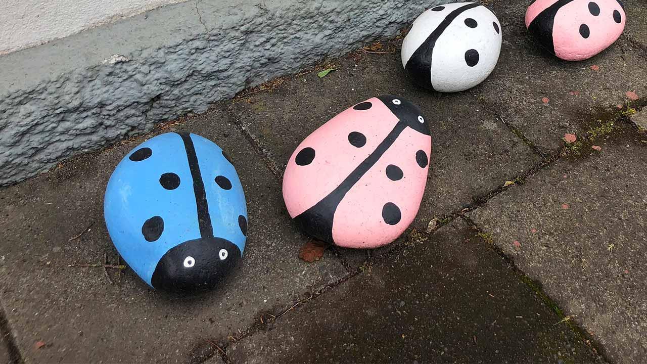 Steine bemalen und auslegen - Marienkäfer