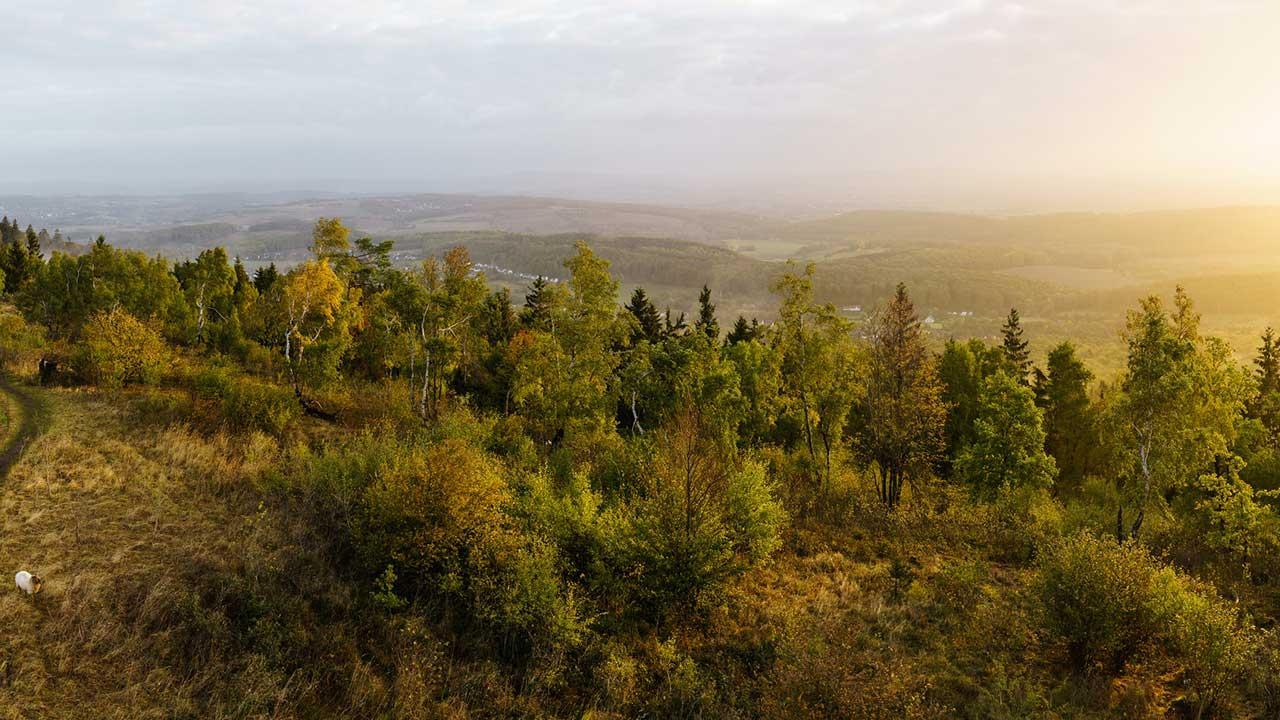 Touren-Tipps fürs Wandern im Teutoburger Wald - Aussicht Velmerstot
