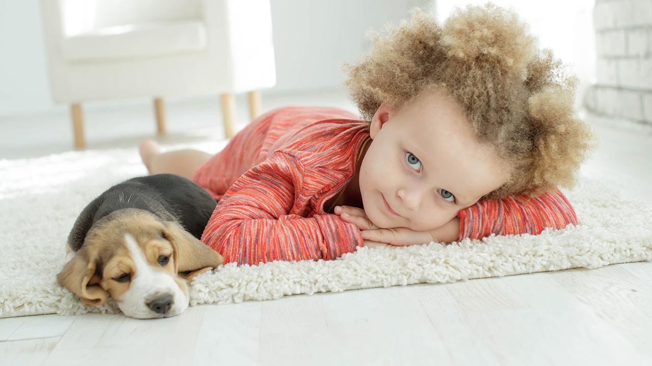 Welcher Hund passt zu mir - Kind mit Hund