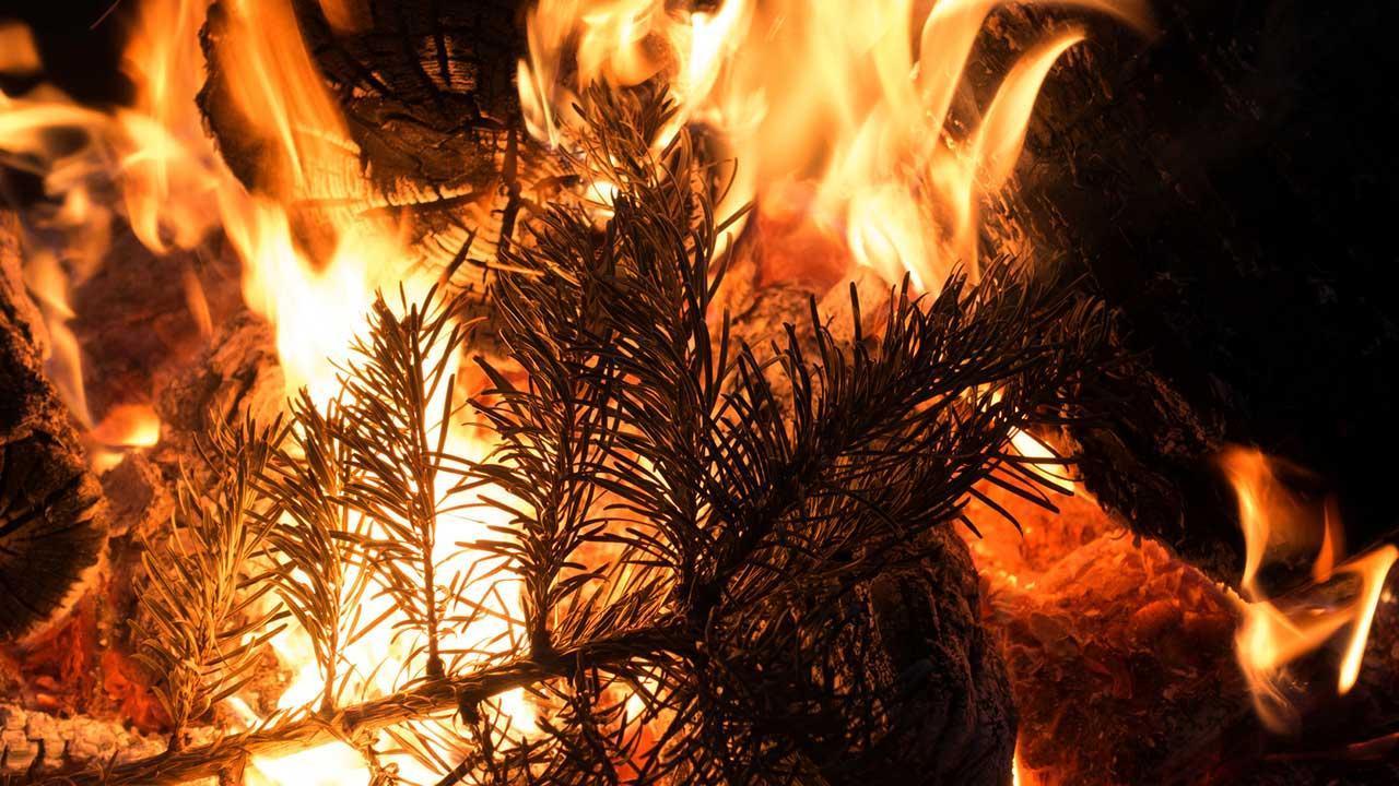 Brandschutz Vorsichtsmaßnahmen für Weihnachten und Silvester - brennender Baum