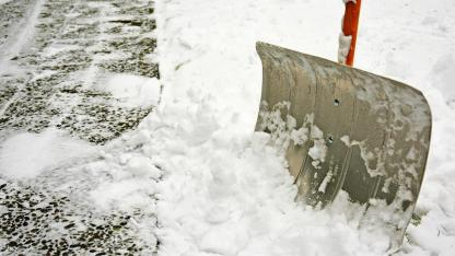 Maisgranulat - Die Alternative zum Steusalz - Schneeschaufel