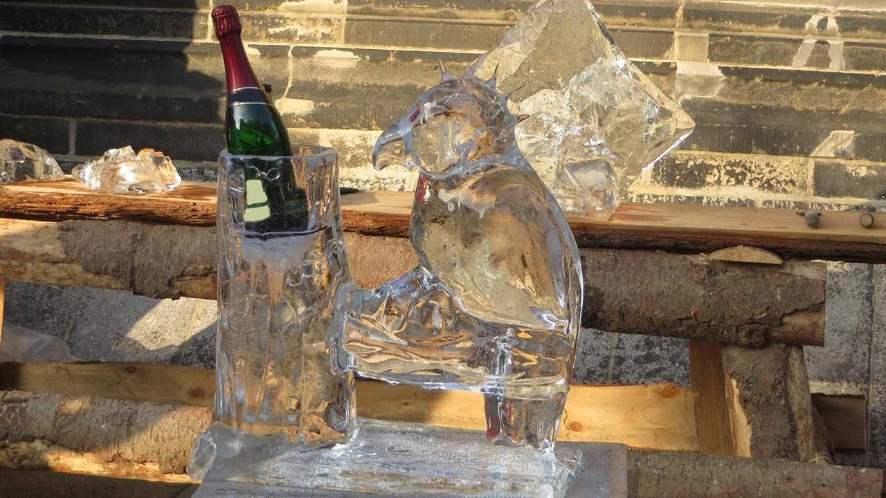 Eisskulpturen selbst gemacht - Eisvogel mit Flasche