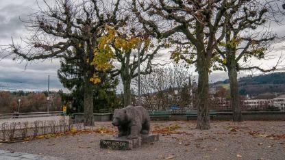Die fünf sehenswertesten Tierparks der Schweiz