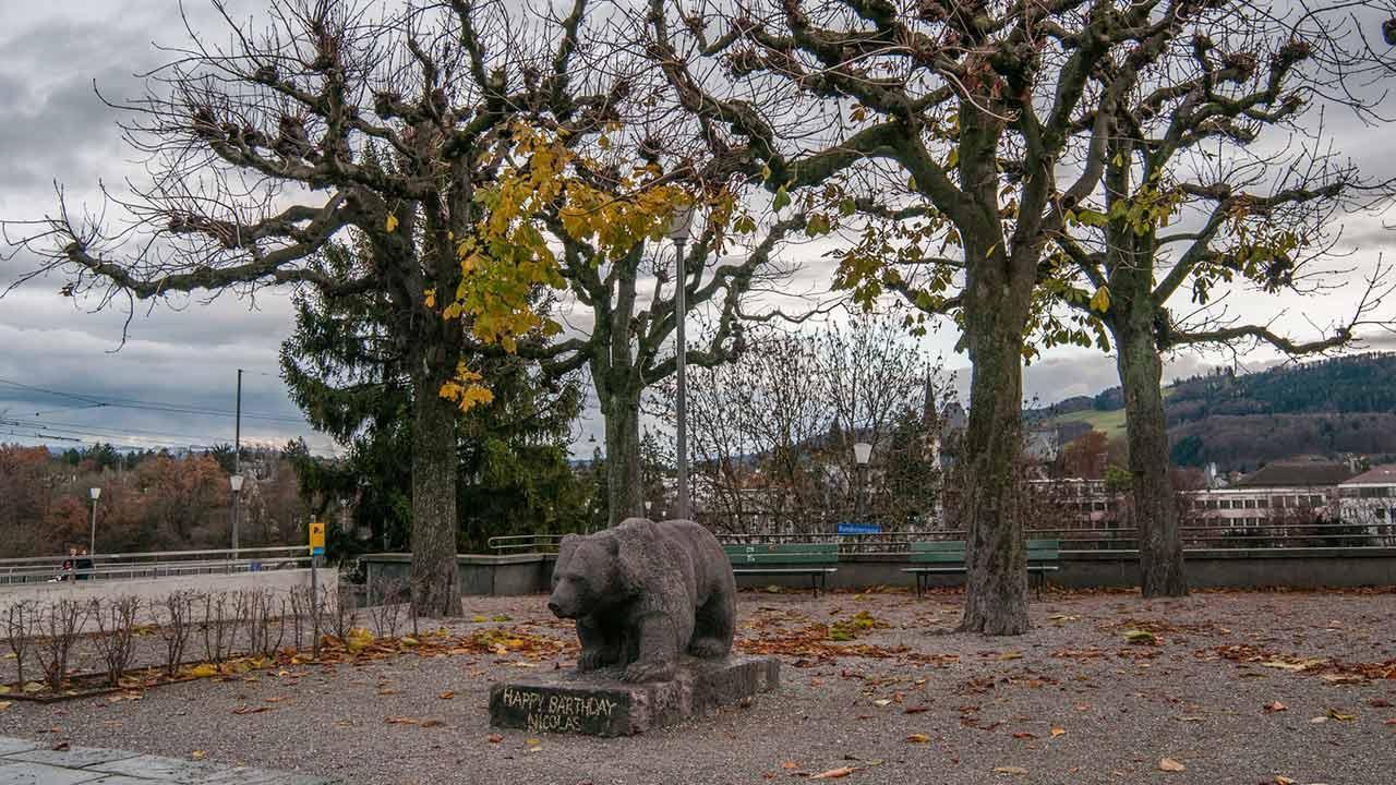Die fünf sehenswertesten Tierparks der Schweiz - Park in Bern