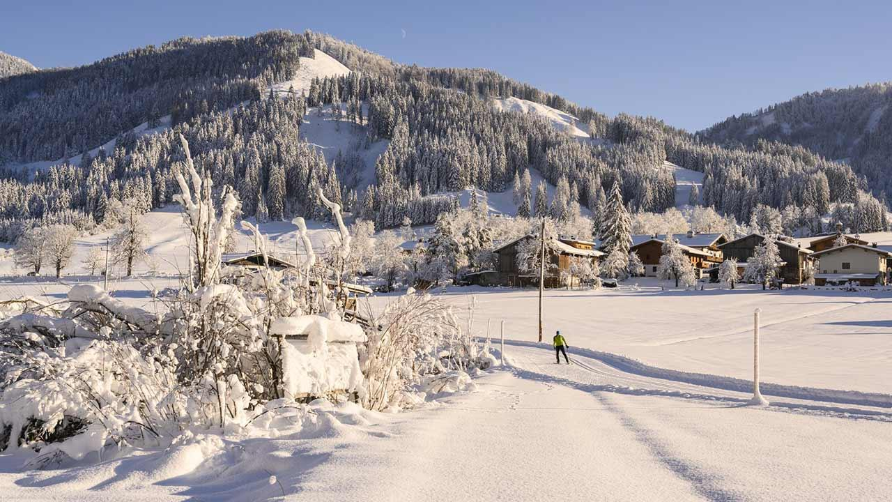 Die besten Langlaufloipen in Bayern - in der Abendsonne