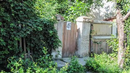 Natürlicher Sichtschutz durch Efeu - Garteneingang