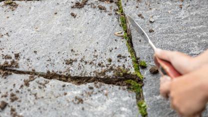 Terrassenfliesen Fugen richtig reinigen
