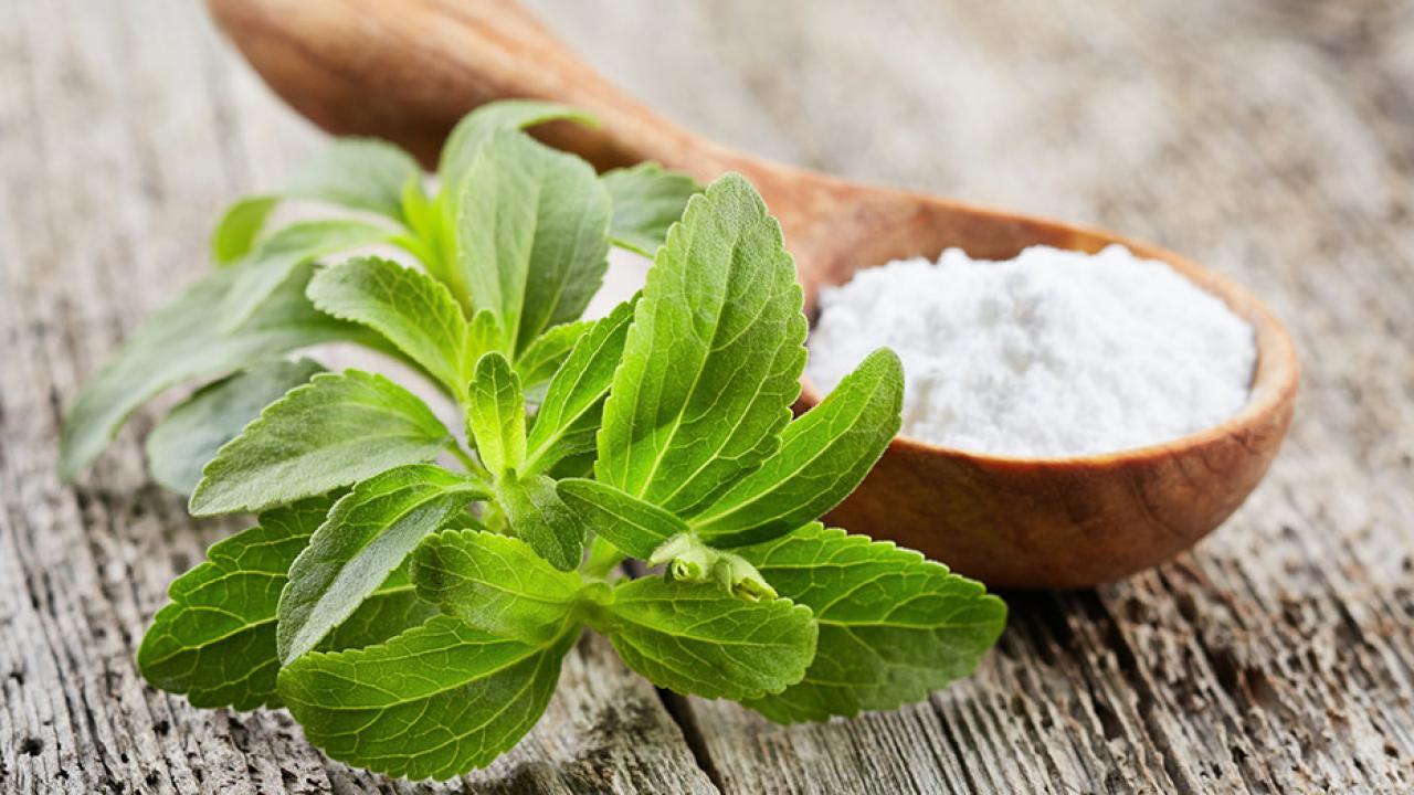 Zucker - Welche Alternativen gibt es? / Stevia