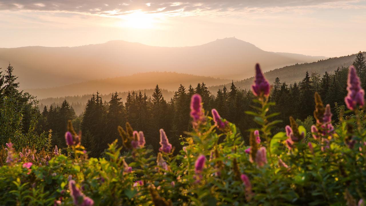 Wandern im Bayerischen Wald / der Große Arber im Bayerischen Wald bei Sonnenuntergang