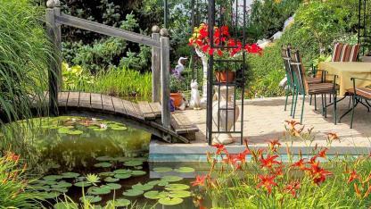 Die schönsten Wasserpflanzen für Ihren Gartenteich