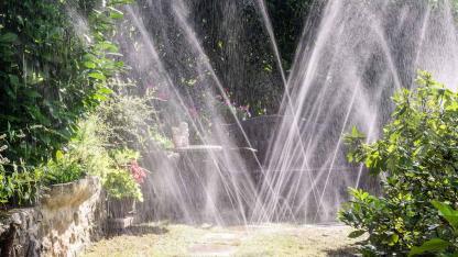 Der beste Rasensprenger für meinen Garten / ein Garten wird gewässert