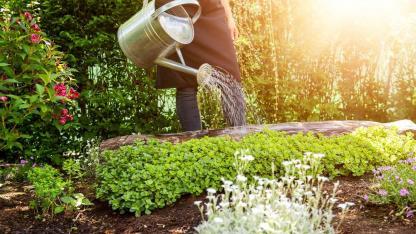 Bewässerungssysteme für den eigenen Garten / Mann gie0t den Garten mit einer Gießkanne