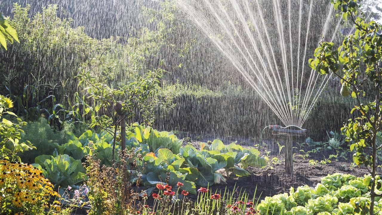 Bewässerungssysteme für den eigenen Garten / Automatische Gartenbewässerungsanlage