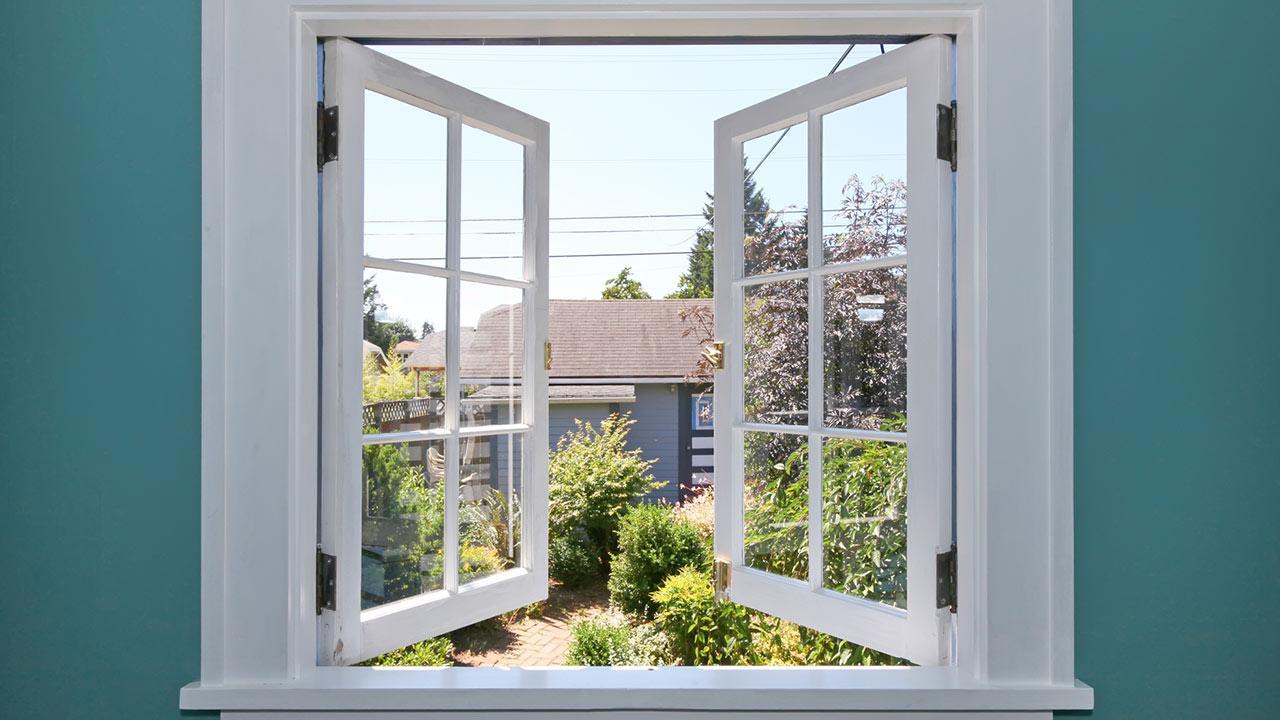 Silberfischchen im Haus - was tun? / ein offenes Fenster
