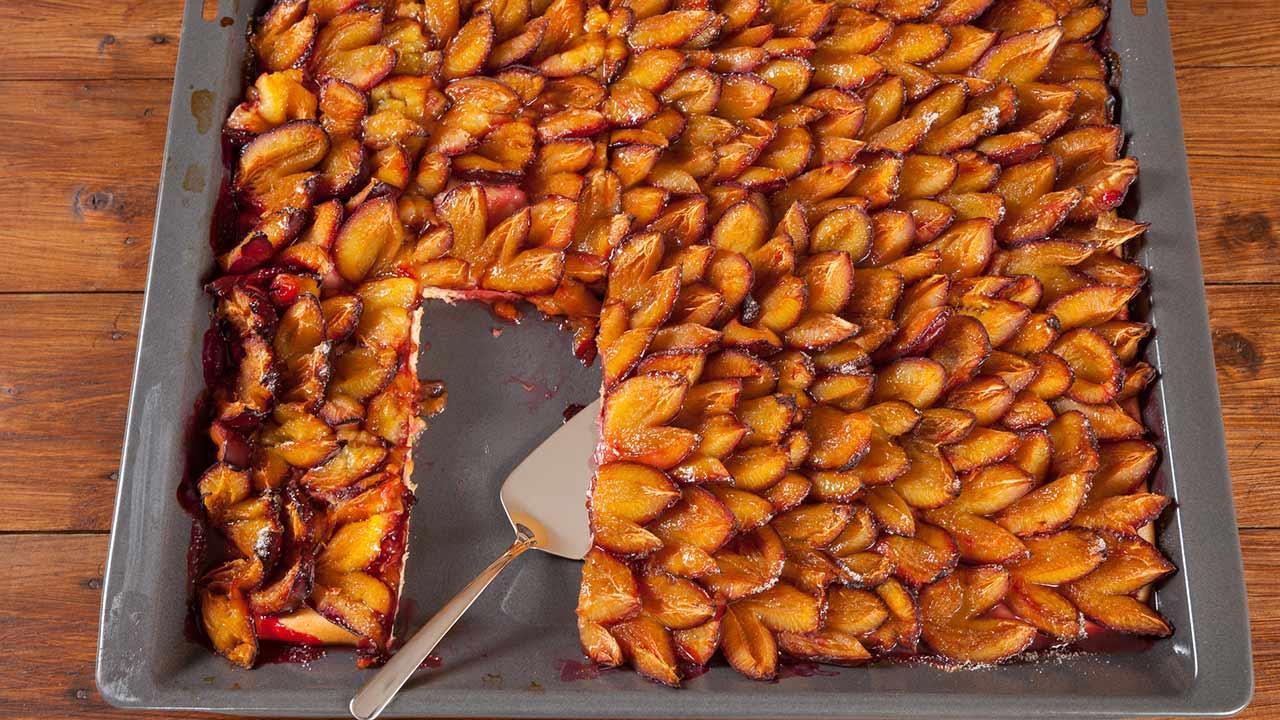 Die leckersten Zwetschgenkuchen - Rezepte / ein Blech von Zwetschgenkuch