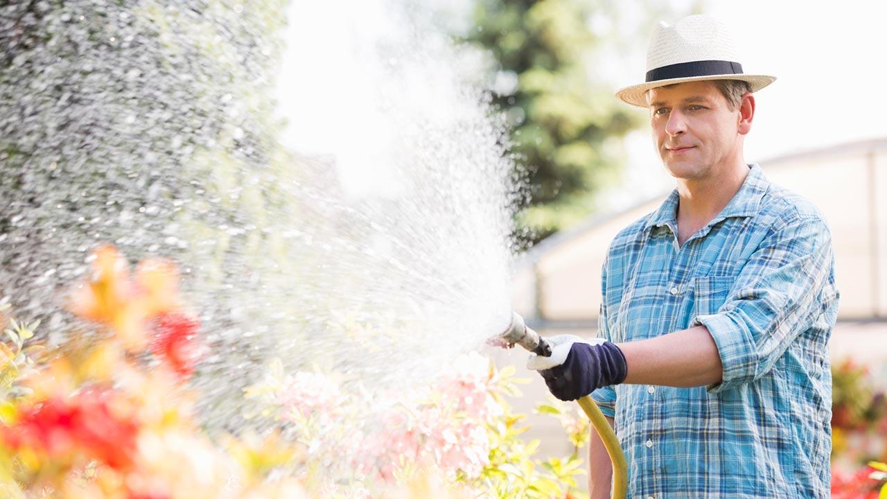 Garten bewässern im Spätsommer / ein Mann gießt den Garten