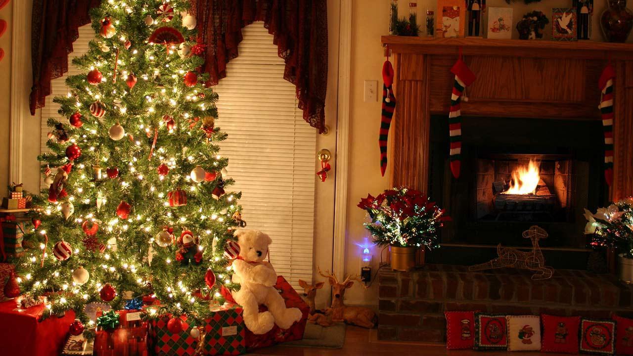 Weihnachtsbäume im Test: Natur oder künstlich ? / ein Tannenbaum im Haus