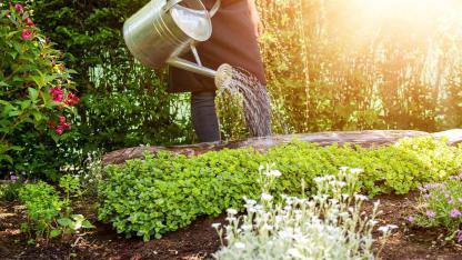 Bewässerungssysteme für Ihren Garten - Gießkanne